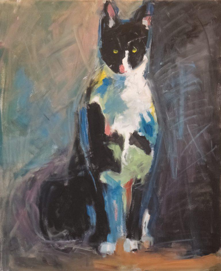 Katt (60 x 73 cm)